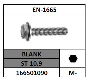 EN-1665 ZESKANTFLENSBOUT STAAL 10.9 BLANK 5X10